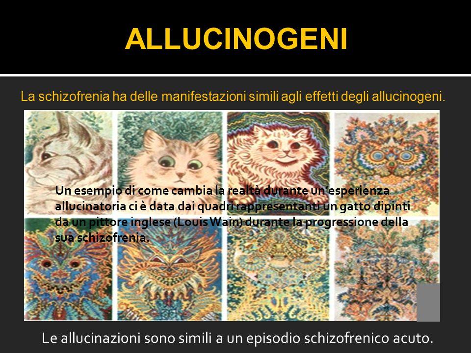 Le allucinazioni sono simili a un episodio schizofrenico acuto.