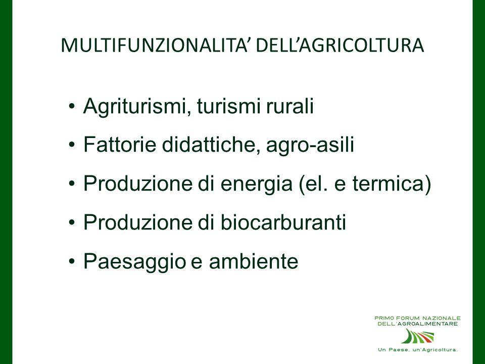 MULTIFUNZIONALITA' DELL'AGRICOLTURA