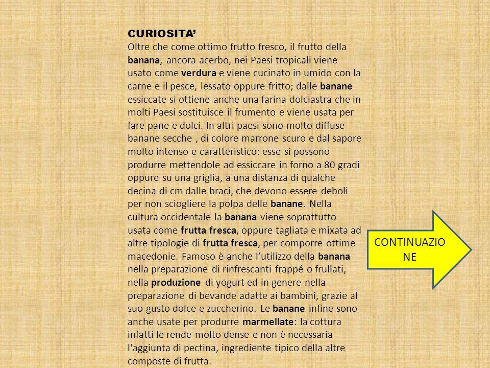 CONTINUAZIONE CURIOSITA'
