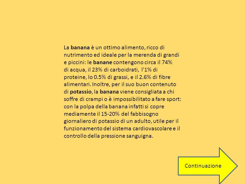 La banana è un ottimo alimento, ricco di nutrimento ed ideale per la merenda di grandi e piccini: le banane contengono circa il 74% di acqua, il 23% di carboidrati, l 1% di proteine, lo 0.5% di grassi, e il 2.6% di fibre alimentari. Inoltre, per il suo buon contenuto di potassio, la banana viene consigliata a chi soffre di crampi o è impossibilitato a fare sport: con la polpa della banana infatti si copre mediamente il 15-20% del fabbisogno giornaliero di potassio di un adulto, utile per il funzionamento del sistema cardiovascolare e il controllo della pressione sanguigna.