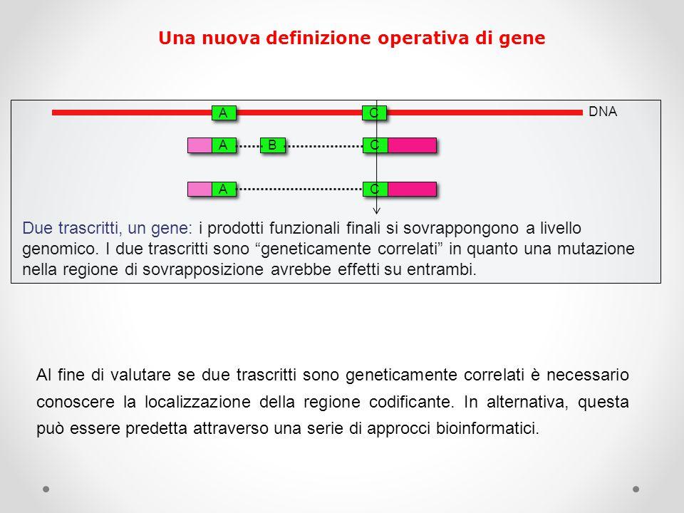 Una nuova definizione operativa di gene