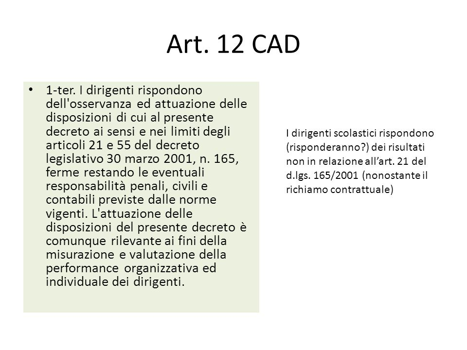 Art. 12 CAD