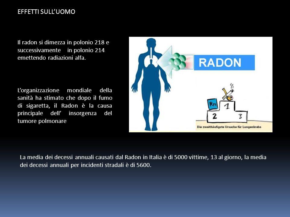 EFFETTI SULL'UOMO Il radon si dimezza in polonio 218 e successivamente in polonio 214 emettendo radiazioni alfa.