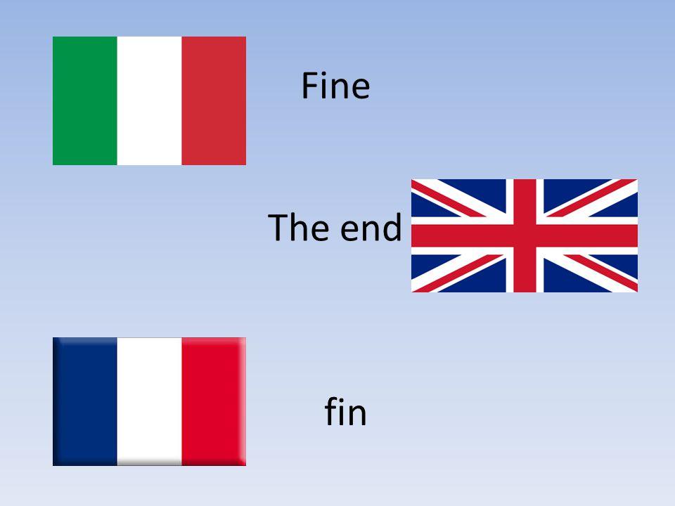 Fine The end fin