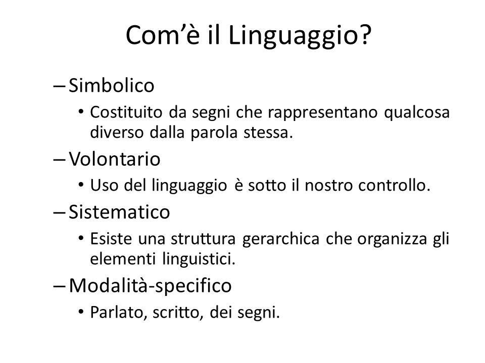 Com'è il Linguaggio Simbolico Volontario Sistematico