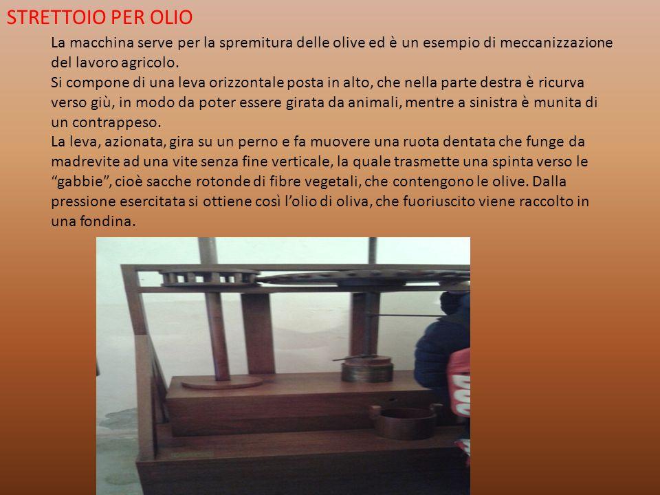 STRETTOIO PER OLIO La macchina serve per la spremitura delle olive ed è un esempio di meccanizzazione del lavoro agricolo.