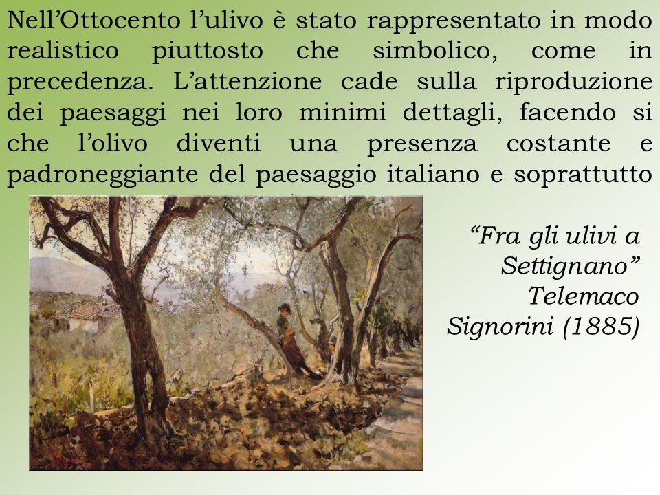 Nell'Ottocento l'ulivo è stato rappresentato in modo realistico piuttosto che simbolico, come in precedenza. L'attenzione cade sulla riproduzione dei paesaggi nei loro minimi dettagli, facendo si che l'olivo diventi una presenza costante e padroneggiante del paesaggio italiano e soprattutto mediterraneo.