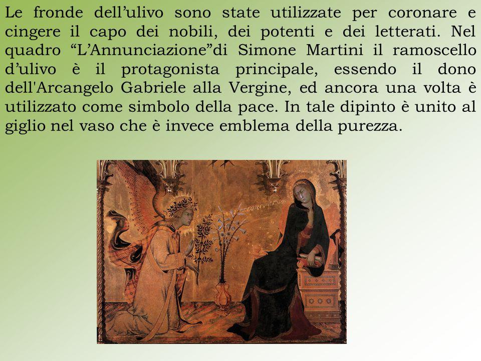 Le fronde dell'ulivo sono state utilizzate per coronare e cingere il capo dei nobili, dei potenti e dei letterati.