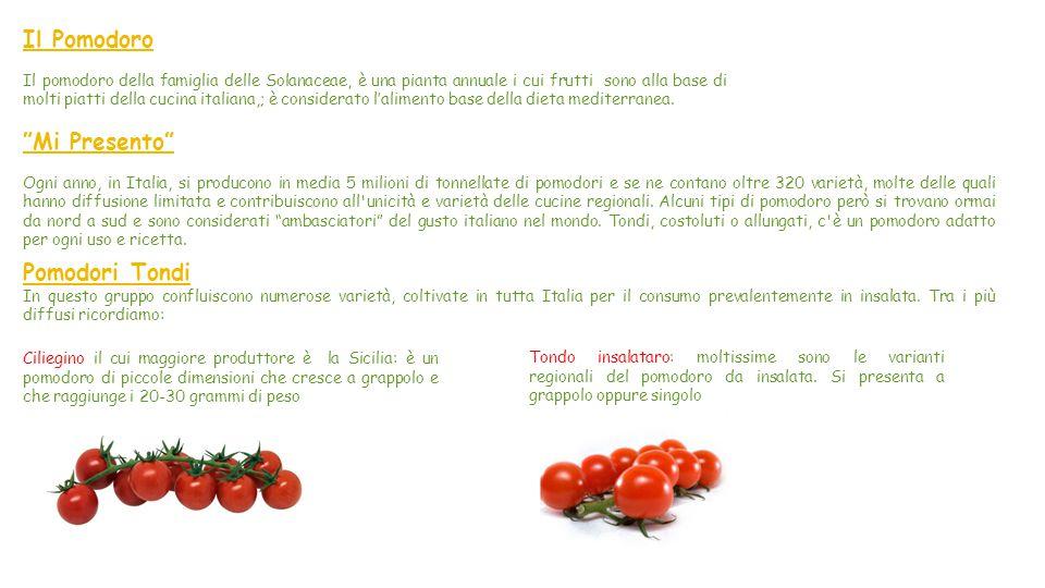 Il Pomodoro Mi Presento Pomodori Tondi