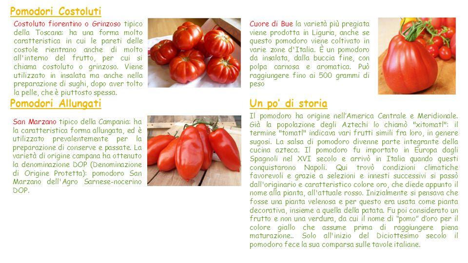 Pomodori Costoluti Pomodori Allungati Un po' di storia