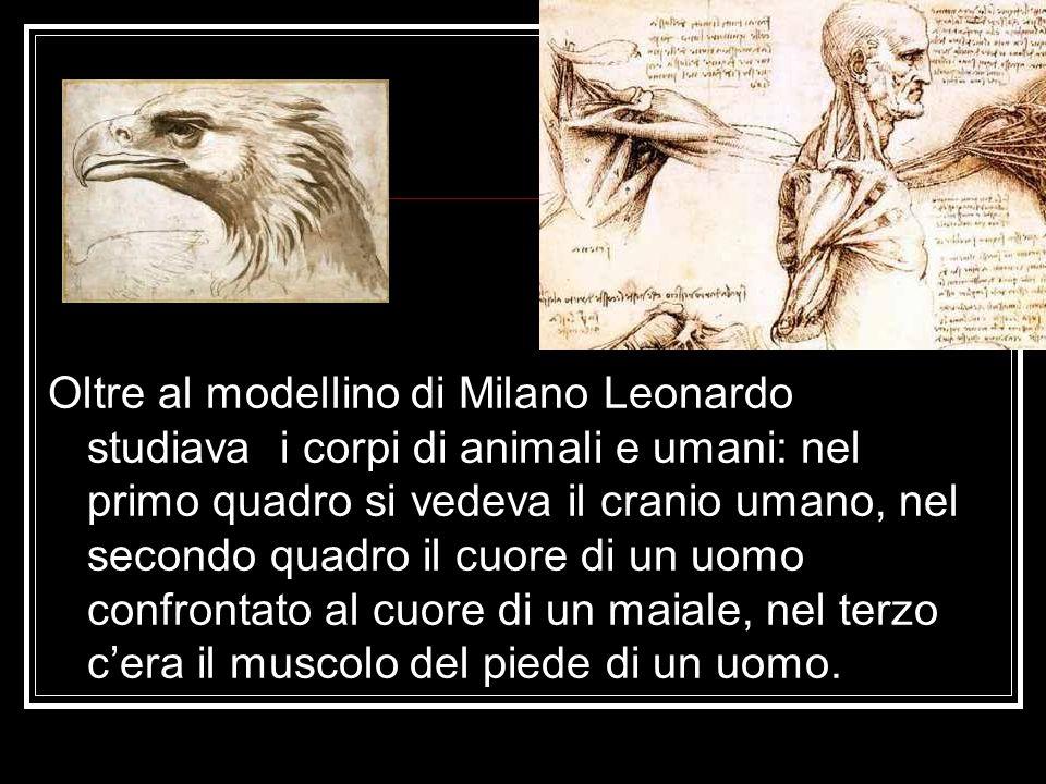 Oltre al modellino di Milano Leonardo studiava i corpi di animali e umani: nel primo quadro si vedeva il cranio umano, nel secondo quadro il cuore di un uomo confrontato al cuore di un maiale, nel terzo c'era il muscolo del piede di un uomo.