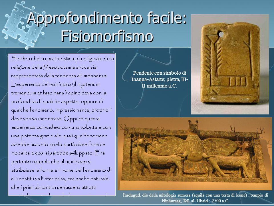 Approfondimento facile: Fisiomorfismo