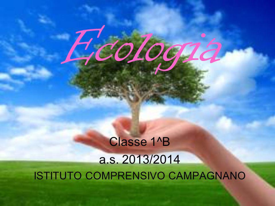 Classe 1^B a.s. 2013/2014 ISTITUTO COMPRENSIVO CAMPAGNANO