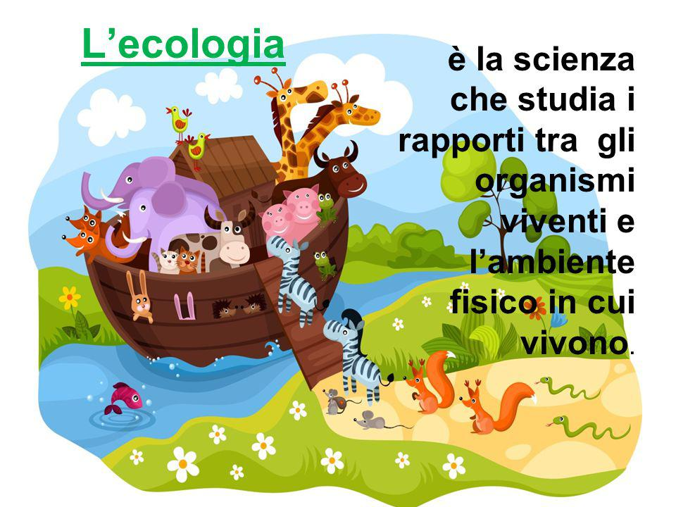 L'ecologia è la scienza che studia i rapporti tra gli organismi viventi e l'ambiente fisico in cui vivono.
