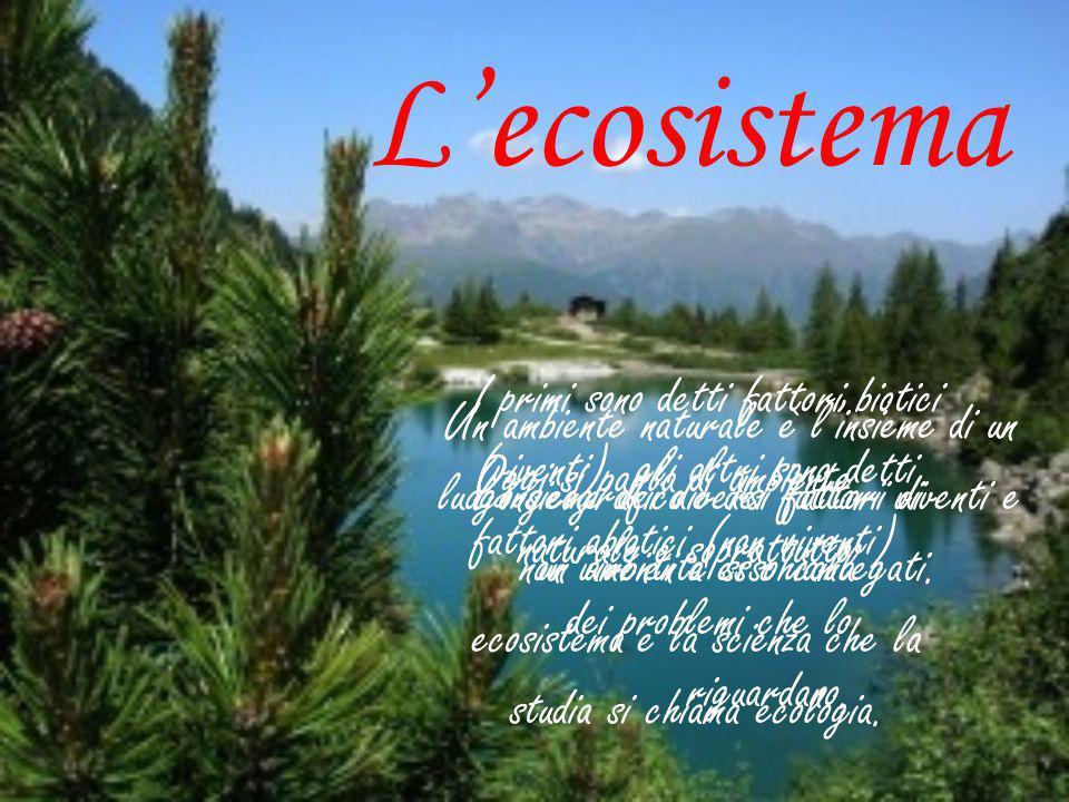 L'ecosistema I primi sono detti fattori biotici (viventi), gli altri sono detti fattori abiotici (non viventi)