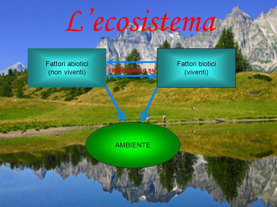 L'ecosistema Fattori abiotici (non viventi) Fattori biotici (viventi)