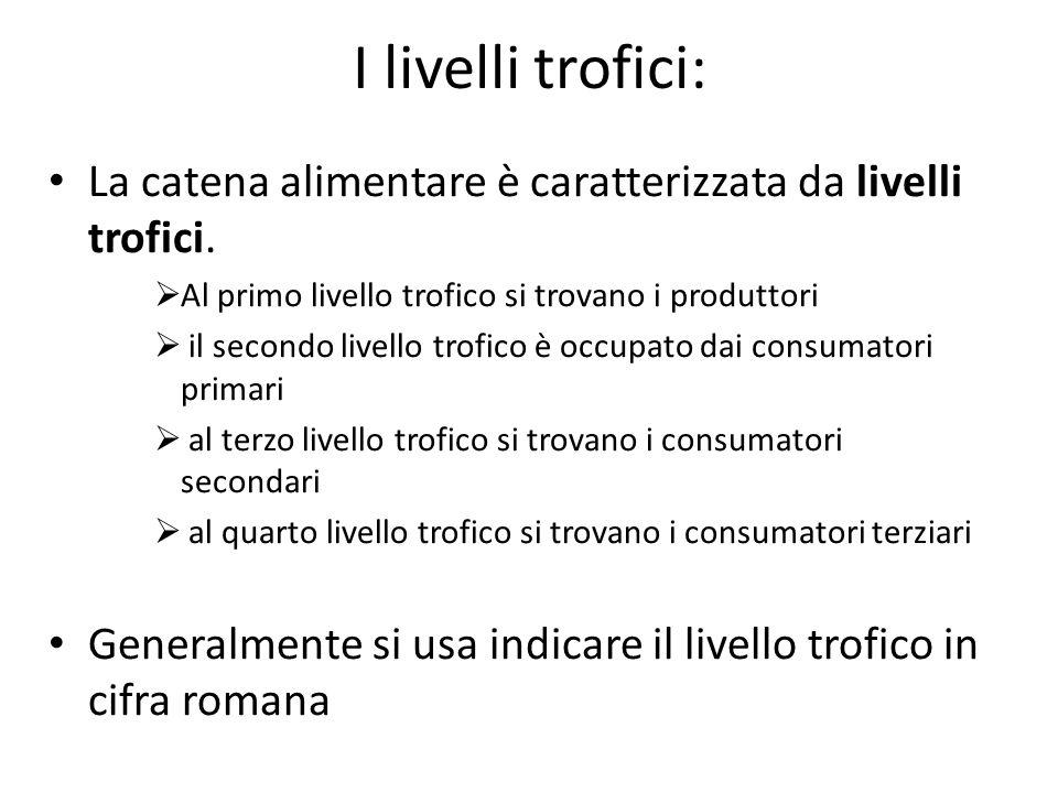 I livelli trofici: La catena alimentare è caratterizzata da livelli trofici. Al primo livello trofico si trovano i produttori.