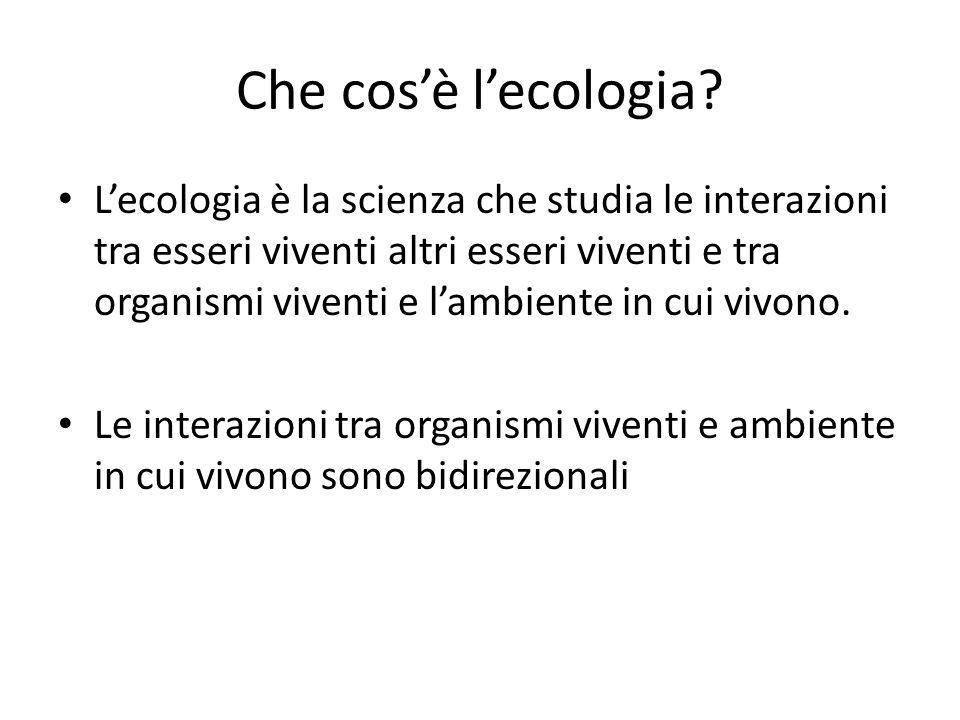 Che cos'è l'ecologia