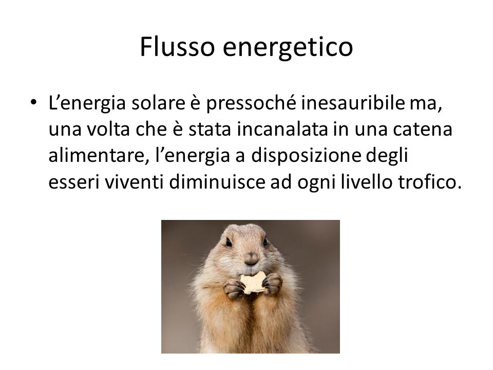 Flusso energetico