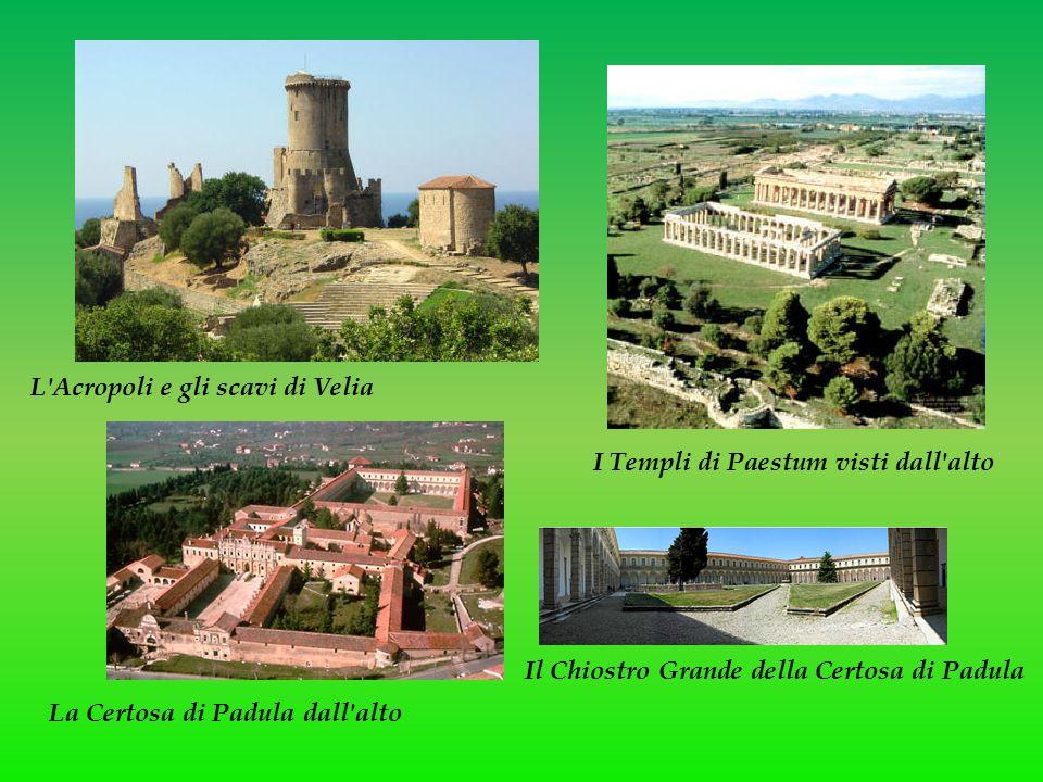 L Acropoli e gli scavi di Velia