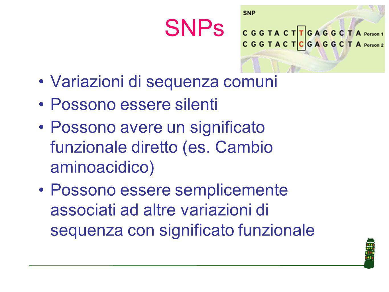 SNPs Variazioni di sequenza comuni Possono essere silenti