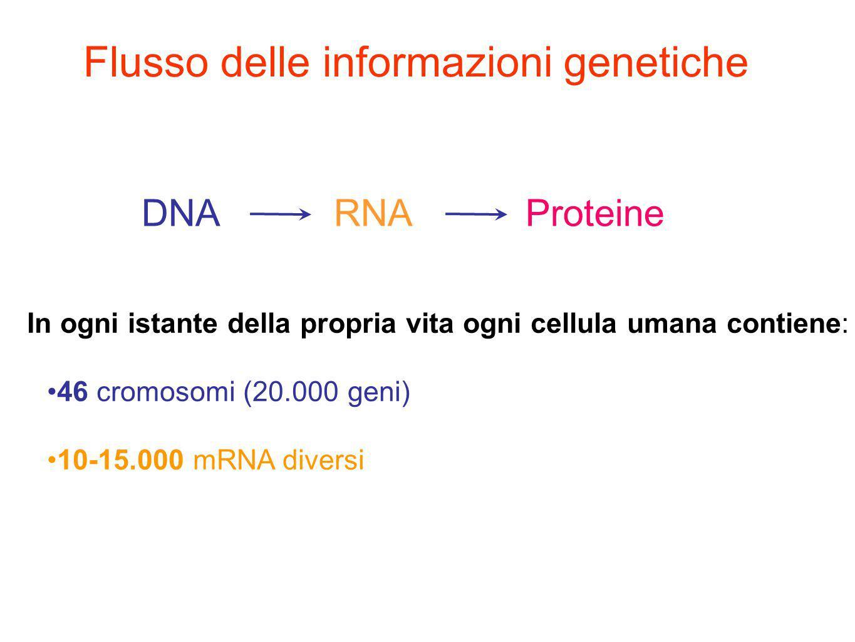 Flusso delle informazioni genetiche