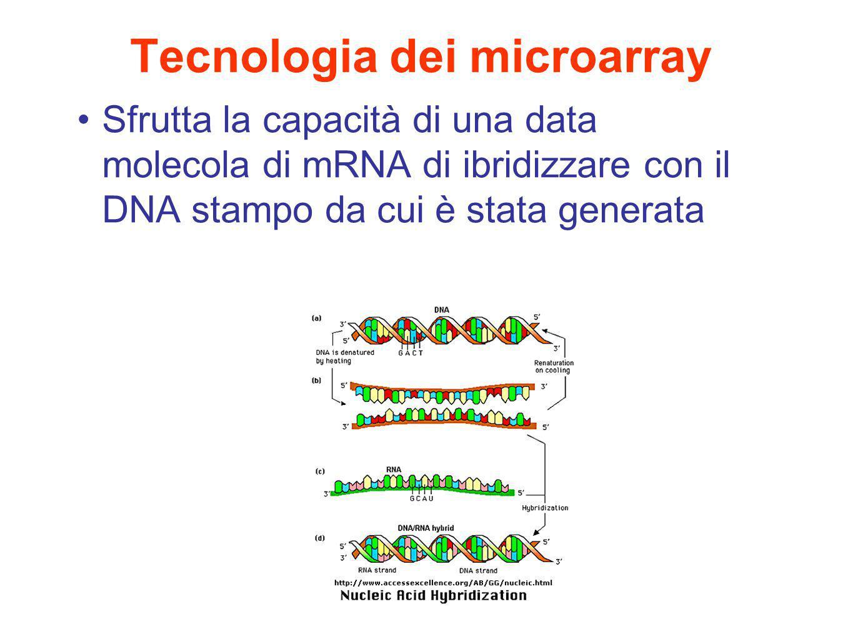Tecnologia dei microarray