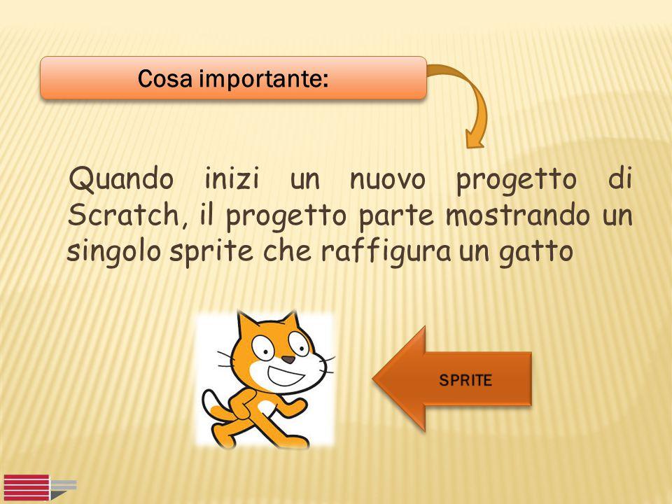 Cosa importante: Quando inizi un nuovo progetto di Scratch, il progetto parte mostrando un singolo sprite che raffigura un gatto.