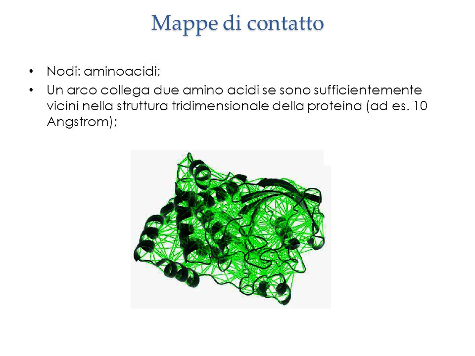 Mappe di contatto Nodi: aminoacidi;