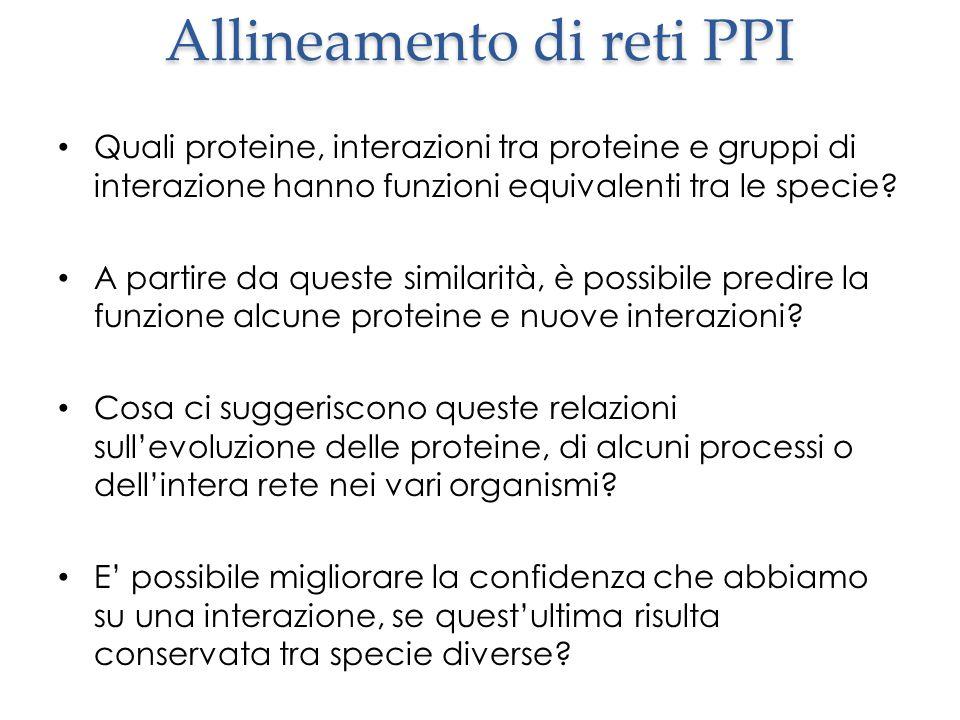 Allineamento di reti PPI