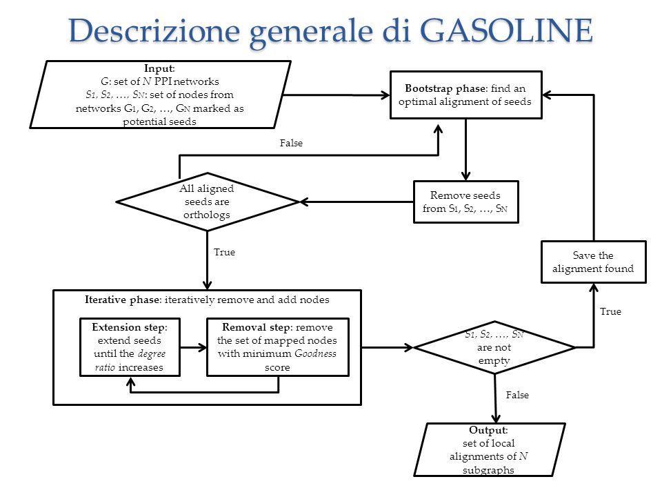 Descrizione generale di GASOLINE