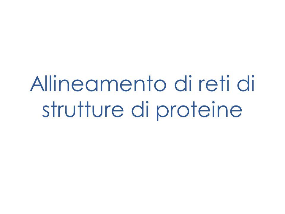 Allineamento di reti di strutture di proteine