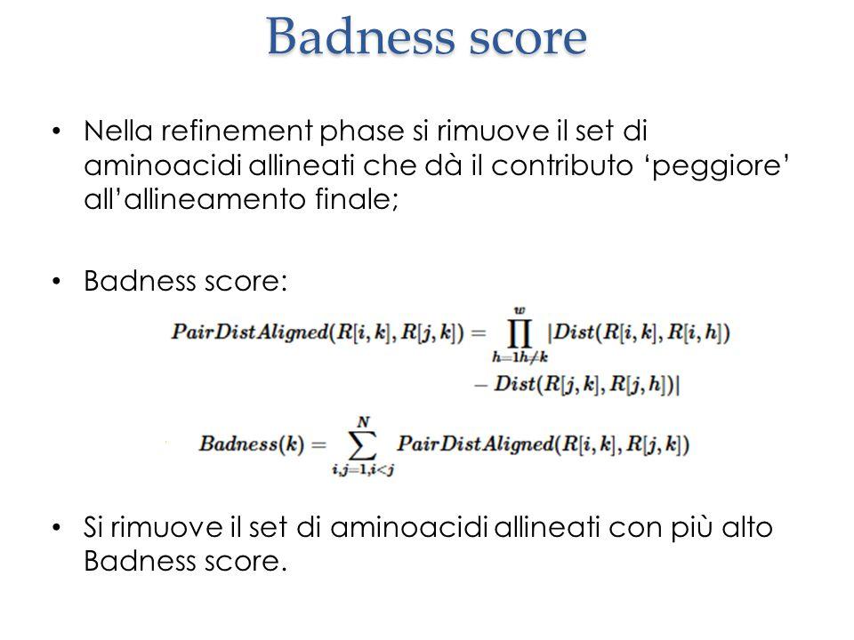Badness score Nella refinement phase si rimuove il set di aminoacidi allineati che dà il contributo 'peggiore' all'allineamento finale;