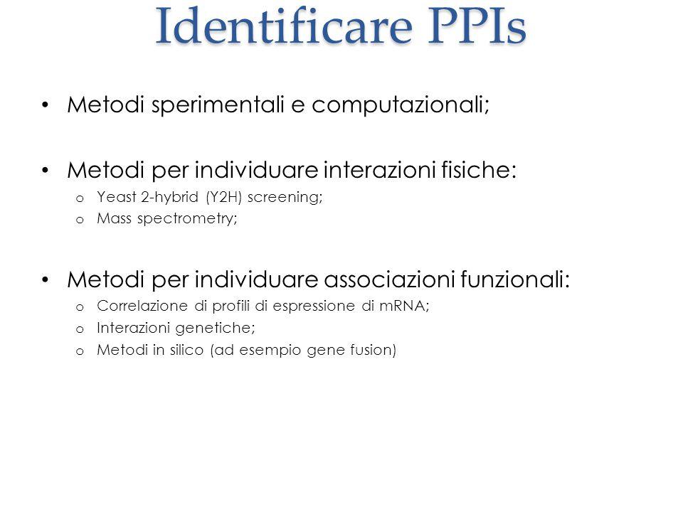 Identificare PPIs Metodi sperimentali e computazionali;