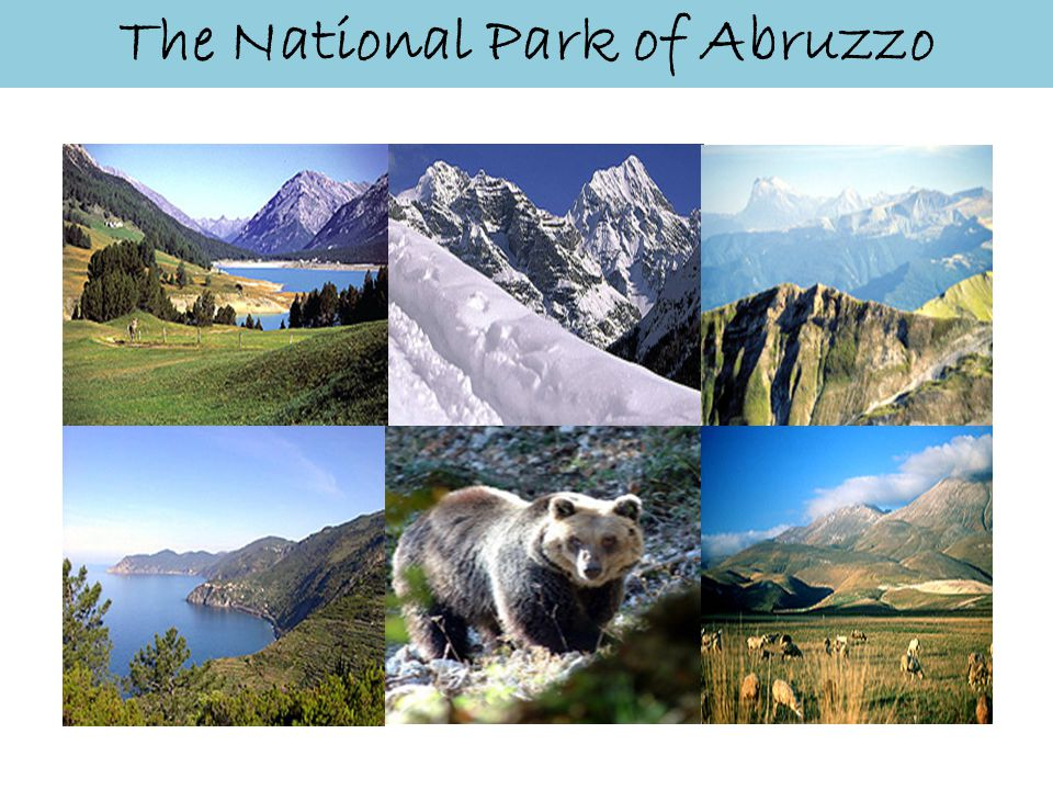 The National Park of Abruzzo