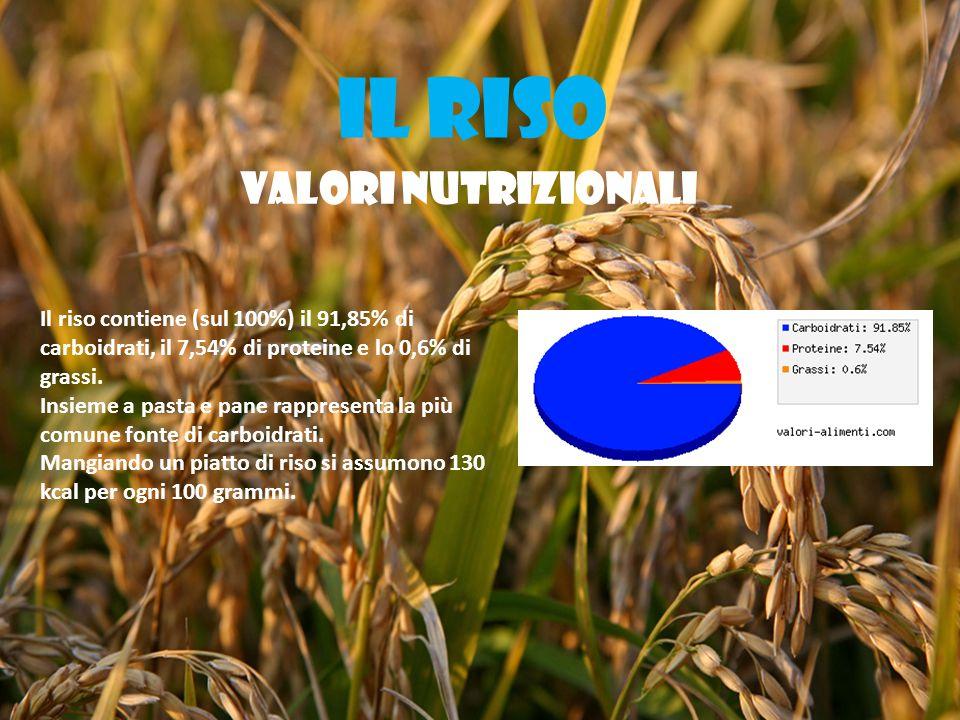 IL RISO VALORI NUTRIZIONALI