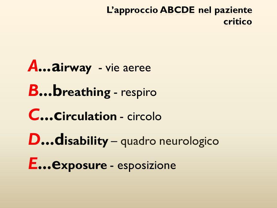 L'approccio ABCDE nel paziente critico