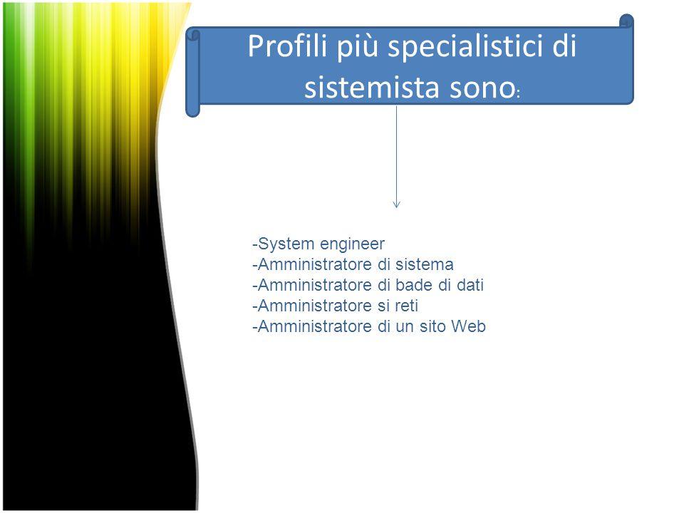Profili più specialistici di sistemista sono: