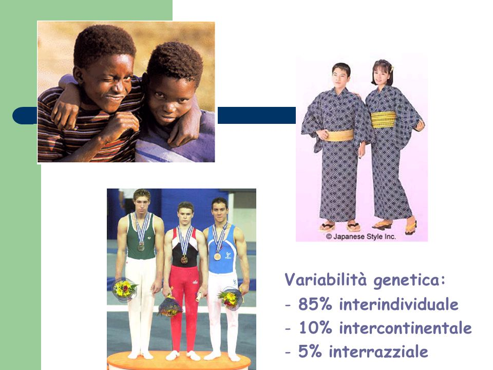 Variabilità genetica: