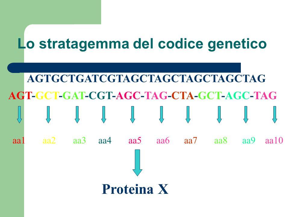 Lo stratagemma del codice genetico