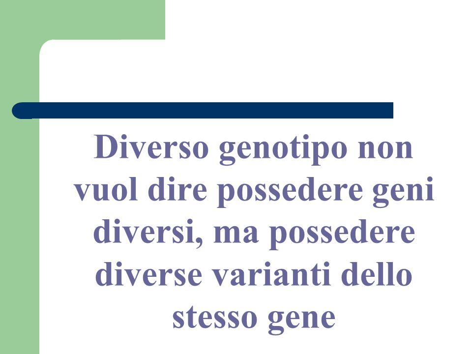Diverso genotipo non vuol dire possedere geni diversi, ma possedere diverse varianti dello stesso gene