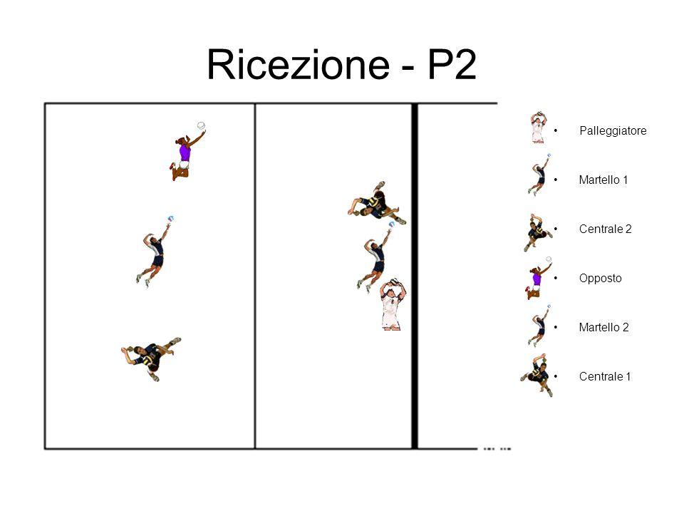 Ricezione - P2 Palleggiatore Martello 1 Centrale 2 Opposto Martello 2