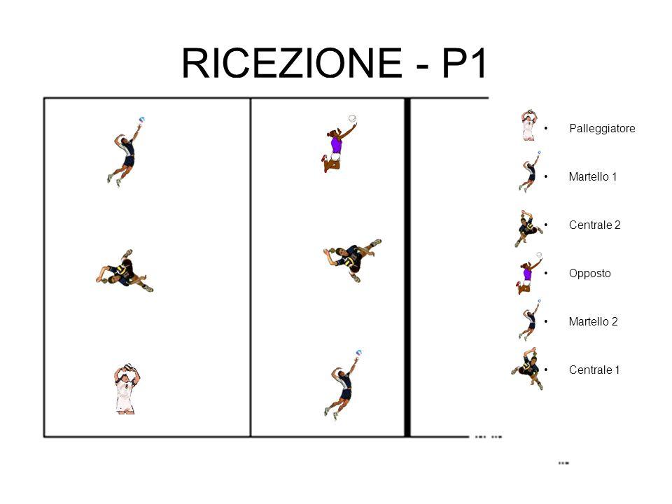 RICEZIONE - P1 Palleggiatore Martello 1 Centrale 2 Opposto Martello 2