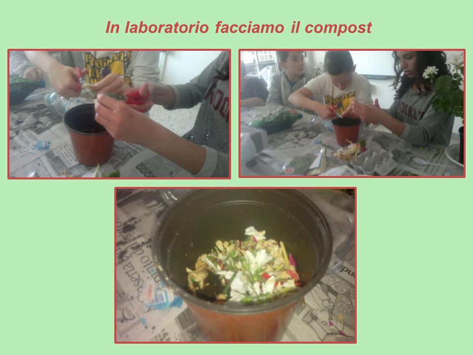 In laboratorio facciamo il compost