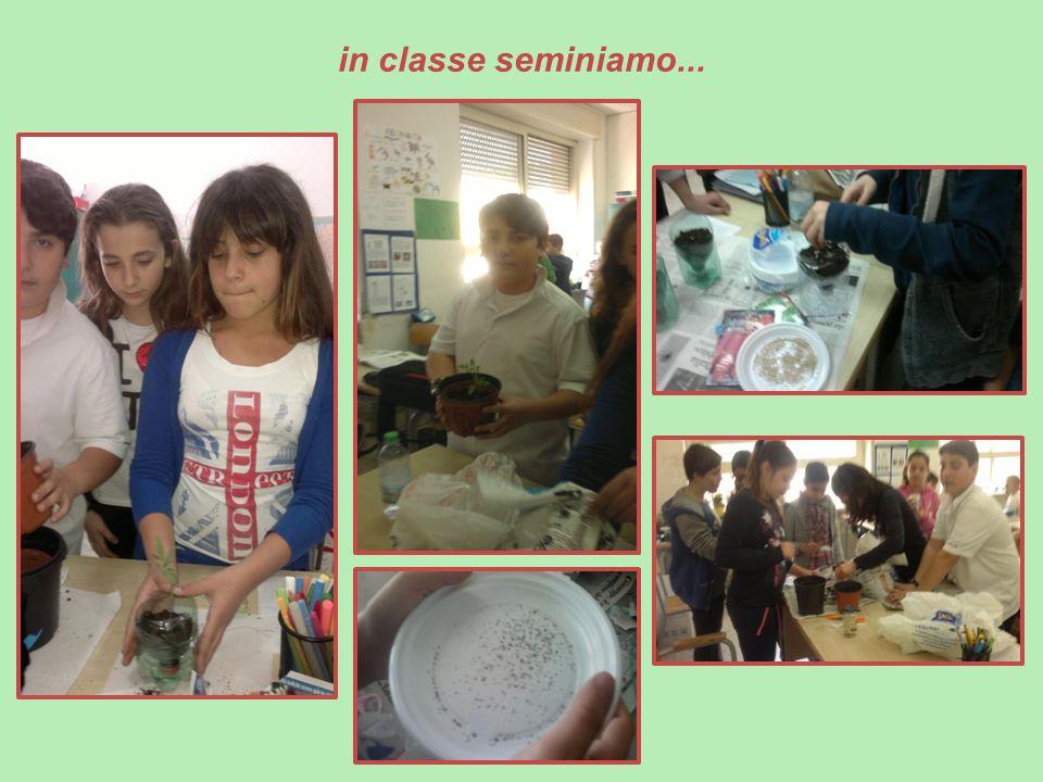 in classe seminiamo...