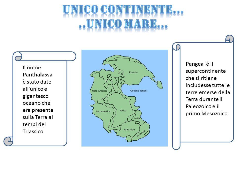 Unico continente… ..unico mare…