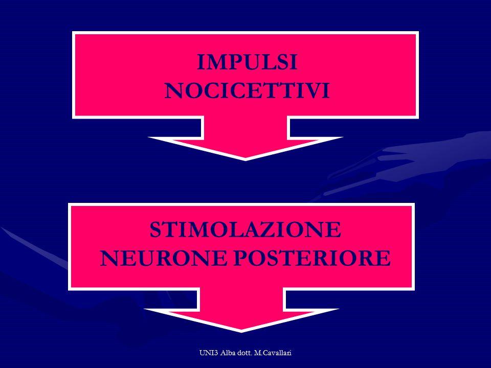 STIMOLAZIONE NEURONE POSTERIORE