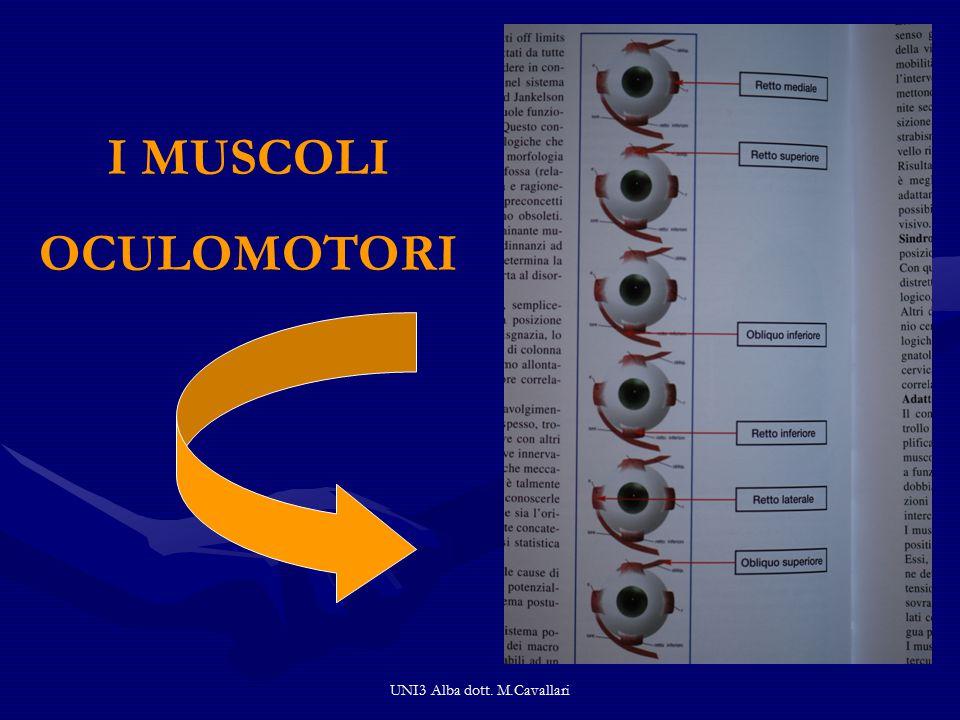 UNI3 Alba dott. M.Cavallari