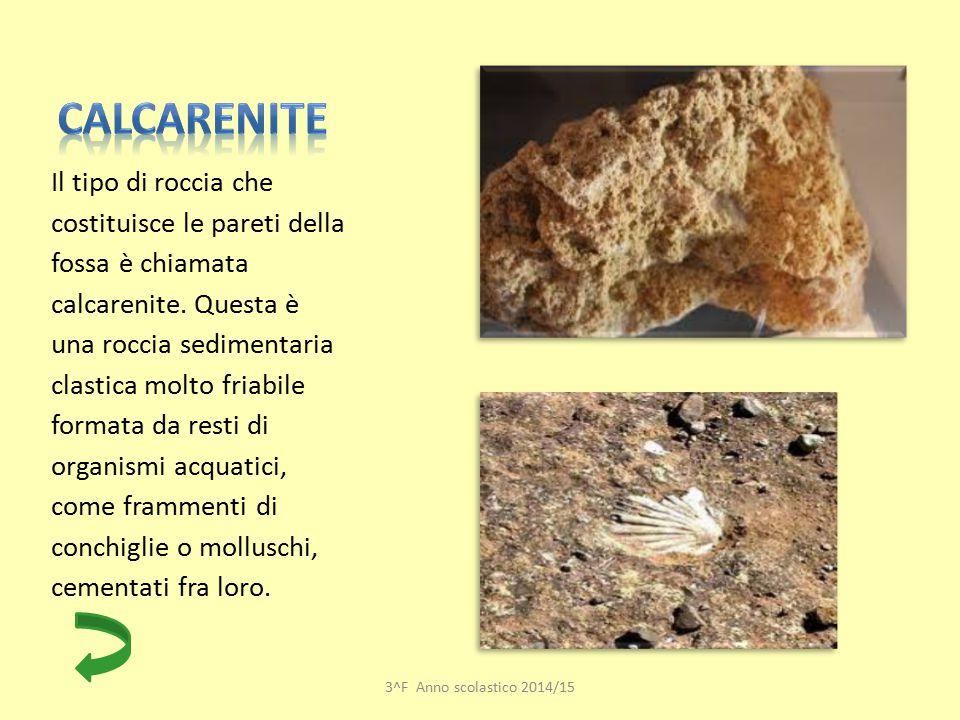 Calcarenite