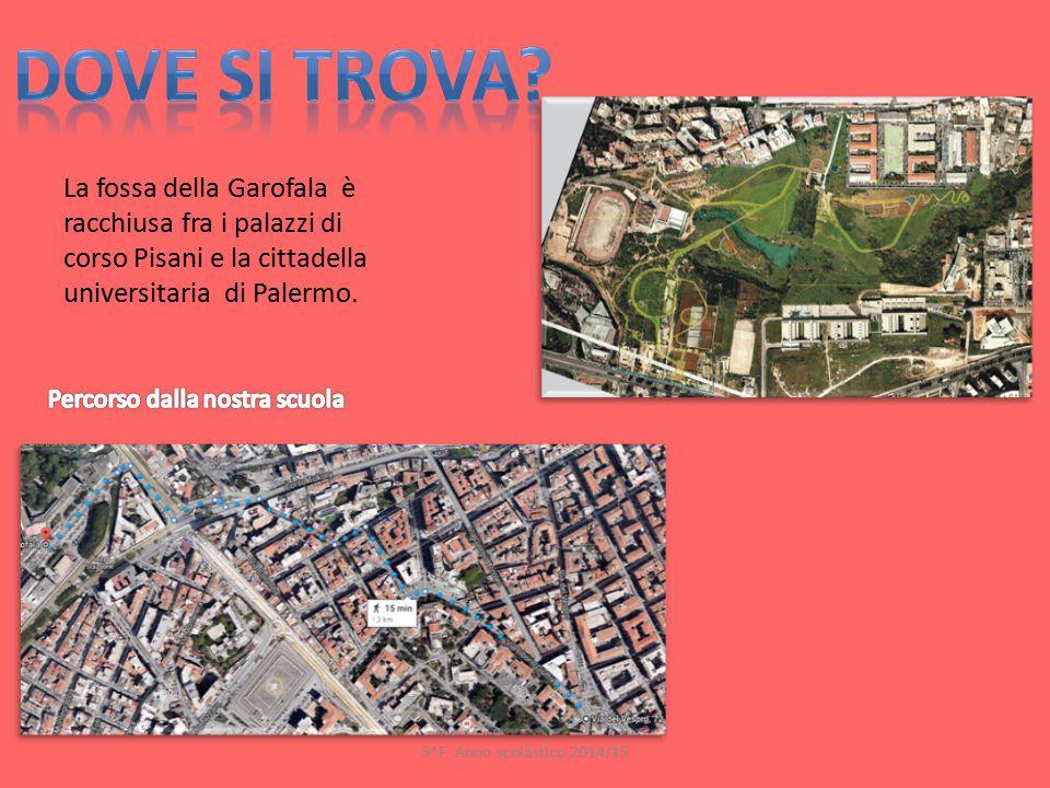 Dove si trova La fossa della Garofala è racchiusa fra i palazzi di corso Pisani e la cittadella universitaria di Palermo.